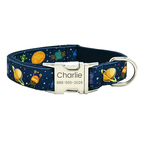 Cute Pup Gear - My Little Space Cadet Collar - No Background